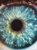 Utazás a szemeink körül